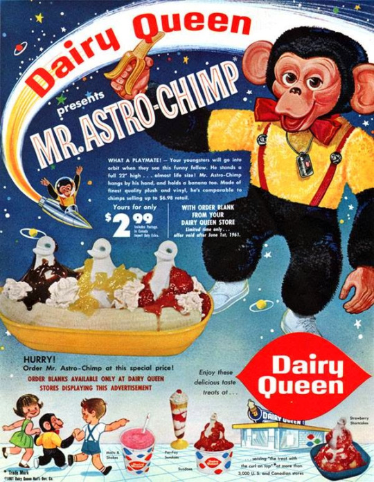 Astro Chimp Ad - Cape Odd