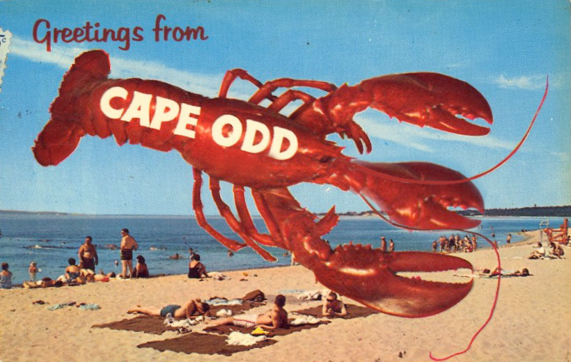 cape-odd-lobster-postcard