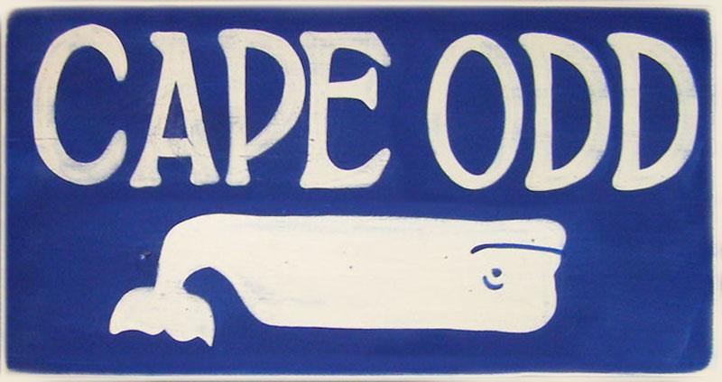 cape-odd-whale