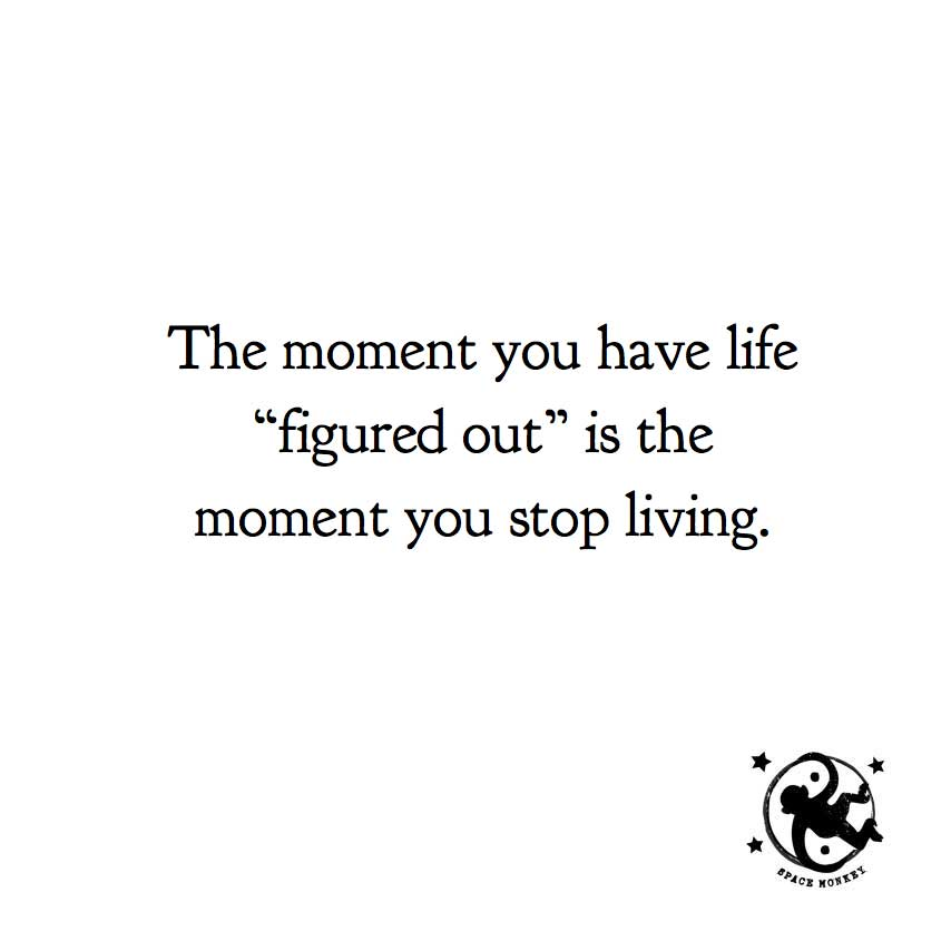 "The moment you have life ""figured out"" is the moment you stop living."