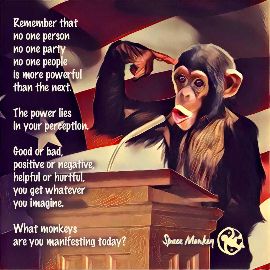 A monkey at the podium